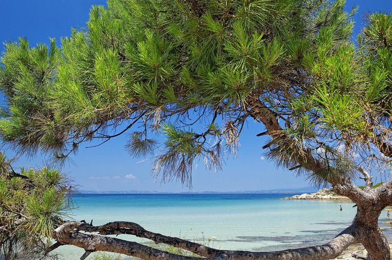 Ikos Oceania 5* - pláž a okolie